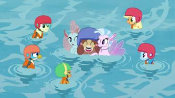 My Little Pony: Friendship Is Magic: Season 8: Non-Compete Clause